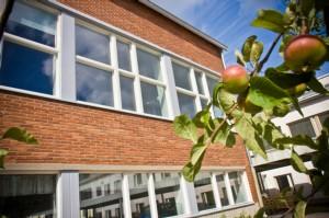 Koulut alkavat - Opinsysin toiminta laajenee.