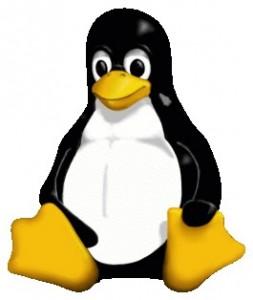Pingviinit pesiytyvät kouluihin